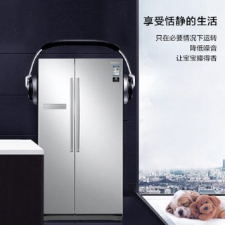 三星冰箱RS55N3003SA